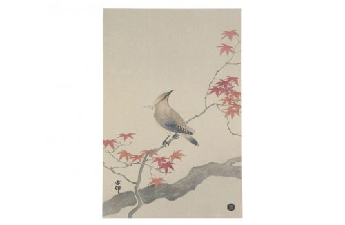 Be Pure Home waxwing poster XL - wonen & lifestyle